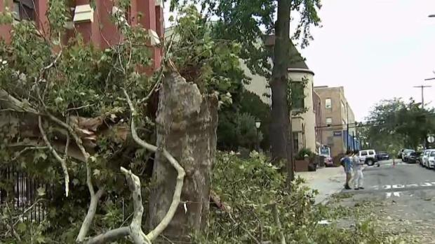 Tornado Touched Down in Queens Thursday