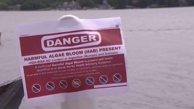 [NY] Toxic Algae Warning at Greenwood Lake