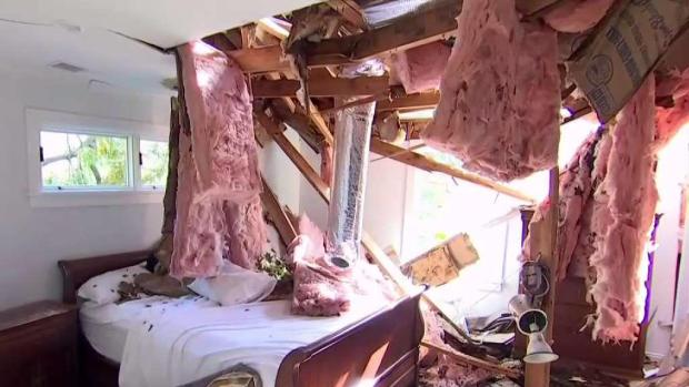 [NY] Tree Comes Through Roof Onto Man's Bed