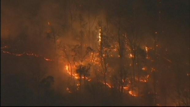 [NY] Widespread Brush Fire Consumes NY Parkland