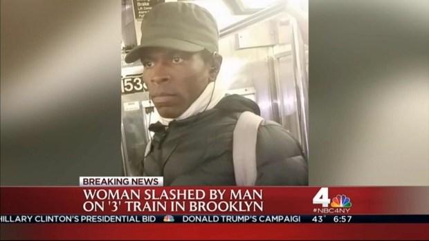 [NY] Crown Heights Subway Slasher Web