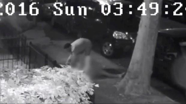 [NY] Man Attacks, Tries to Rape Woman on Street Near Prospect Park