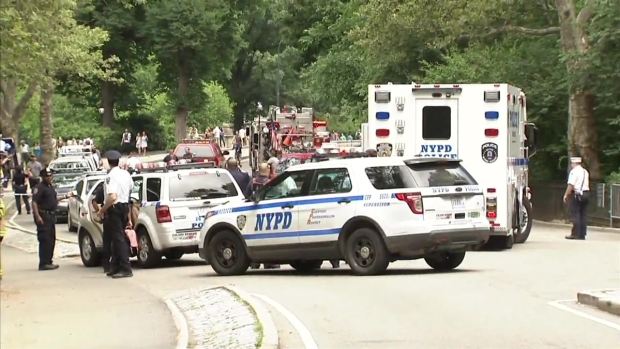 [NY] Man Injured by Small Explosion in Central Park: Authorities