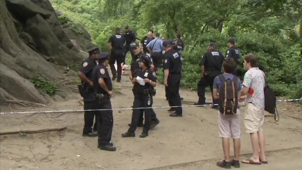 [NY] 'Explosive Hobbyist' Could Be Responsible for Central Park Blast: NYPD