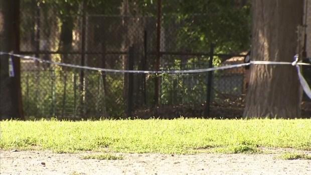 [NY] Woman's Body Found in Brooklyn Park