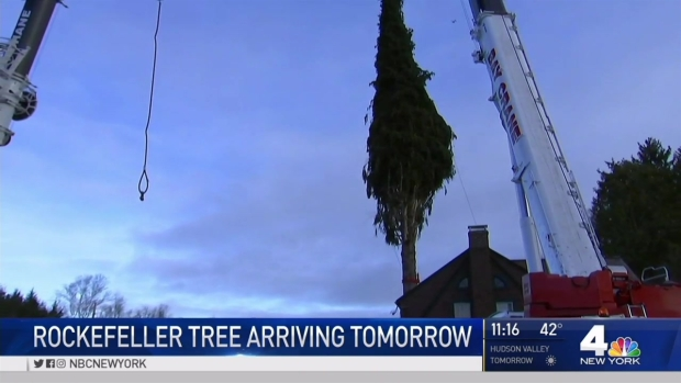30 Rock Christmas Tree Arrives in Manhattan