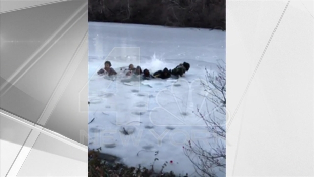 [NY] Tourists Taking Selfie Capture Dramatic Central Park Ice Rescue