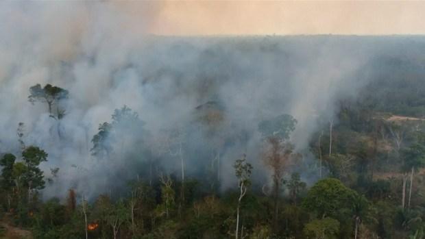 [NATL] Respiratory Ailments Rise in Brazil as Amazon Fires Burn