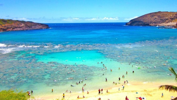 These Are the 5 Best Beaches in the World, TripAdvisor Says