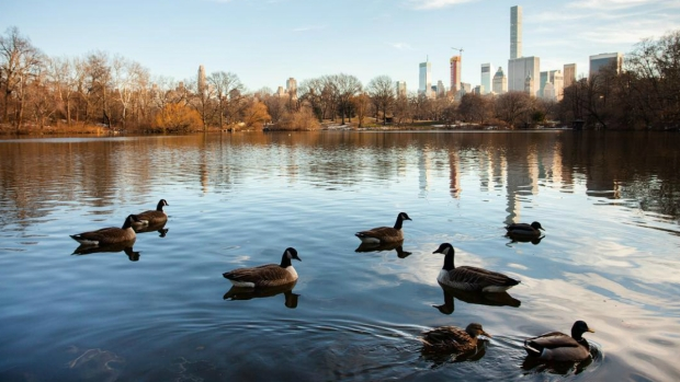 7 Ways to Enjoy the Warm Spring Weather in NYC