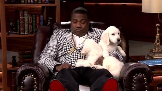 [NATL] 'Tonight Show': Pup Quiz with Tracy Morgan