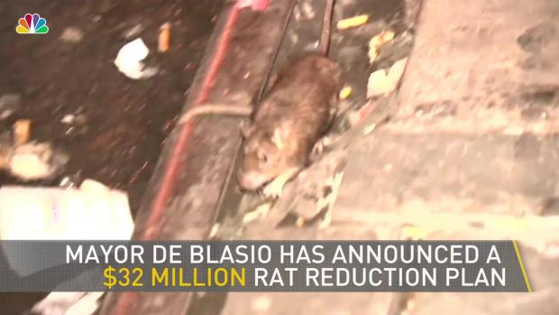 [NY] News Coverage Shows Up NYC Rat Problem