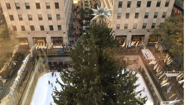 Mammoth 2016 Rockefeller Center Tree Readies for Spotlight