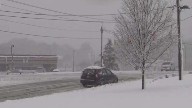 Snow Blankets Eastern Long Island