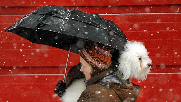 Photos: Snow Buries Big Apple