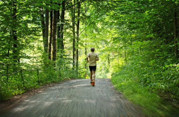 These Are New Jersey's 10 Healthiest Communities: Ranking