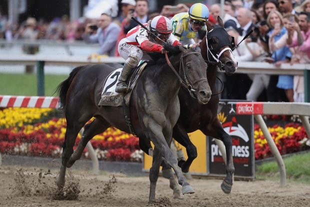 [NATL] PHOTOS: Cloud Computing Wins the 142nd Preakness Stakes