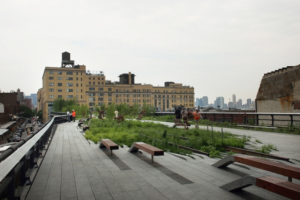 A Peek at the High Line Park