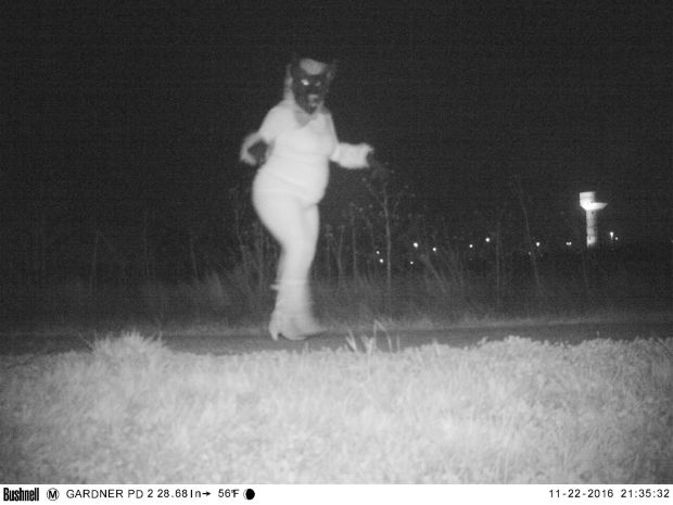 Trail Cameras Spot Creatures of the Night