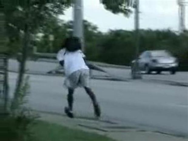 [DFW] When Mockingbirds Attack