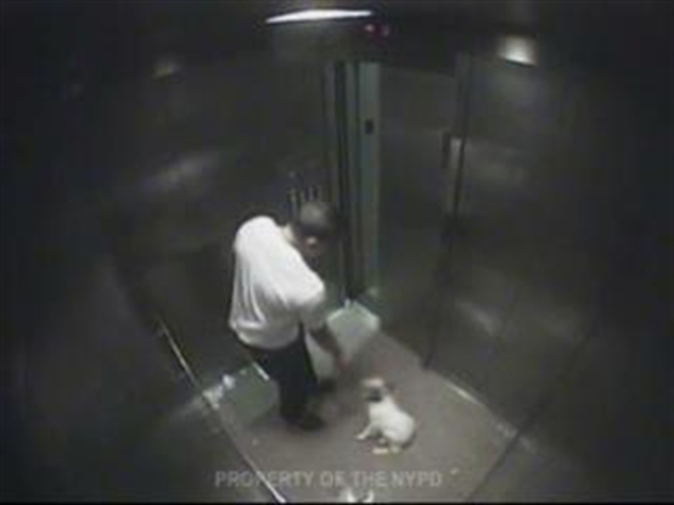 [NY] Man Beats Dog in Elevator