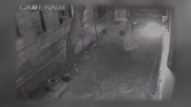[NY] Police Warn of Washington Heights Fire Escape Burglar