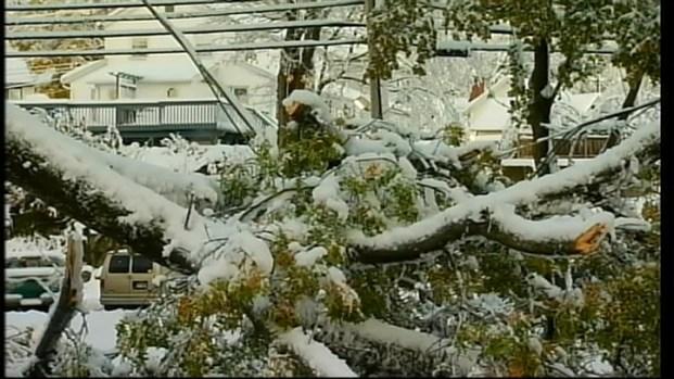 [NY] Snowfall in Connecticut [Raw]