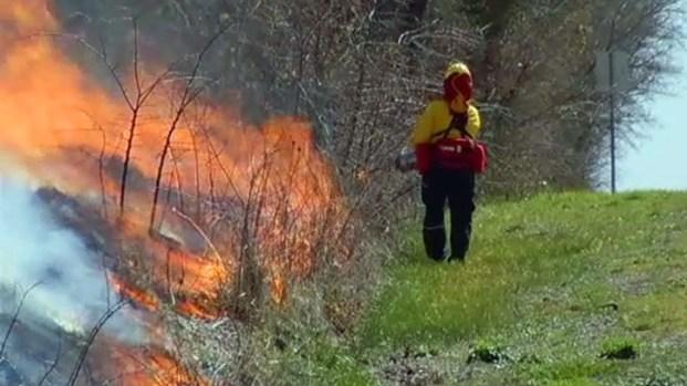 [DFW] Controlled Burn in Cedar Hill