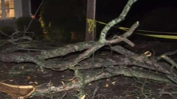 [NY] Tree Falls on Young Girl As Strong Storms Hit Tri State