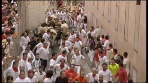 [NATL-CHI] Humane Society Wants to Stop U.S. Bull Run