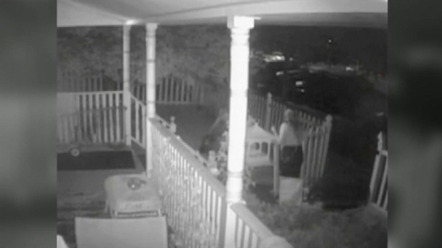 [NY] Surveillance Video: 2 Women Steal Disabled Boy's Wagon