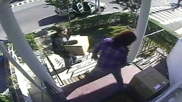 [NY] Thieves Steal Packages off Staten Island Porch