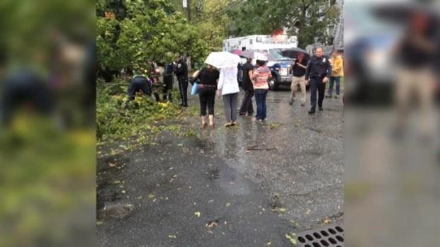[NY] Falling Tree Hits NJ Mom During Fierce Storm