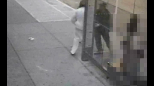 [NY] Surveillance Video: Suspect, Person of Interest Sought in Brooklyn Rapes