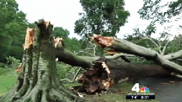 [NY] Microburst Takes Down Trees, Gazebo in L.I. Park
