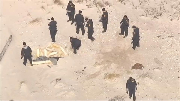 [NY] Raw Chopper Video: L.I. Beach Remains Search