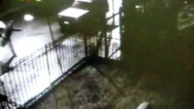 [NY] Surveillance Video: Suspect Throws Molotov Cocktail at Queens Home