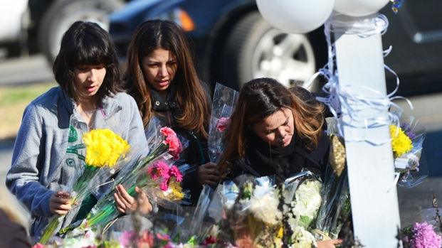 [NY] Devastated Newtown Residents Search for Answers