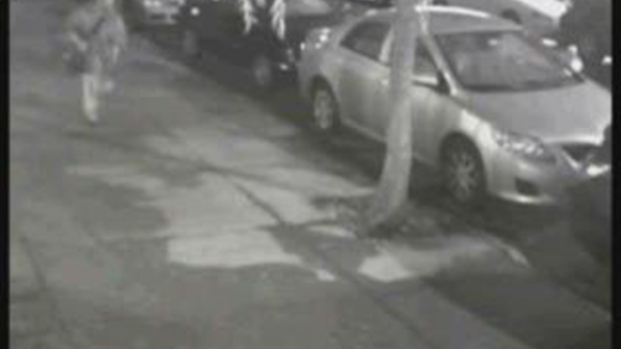 [NY] Surveillance Video: Park Slope Sex Abuse Suspect