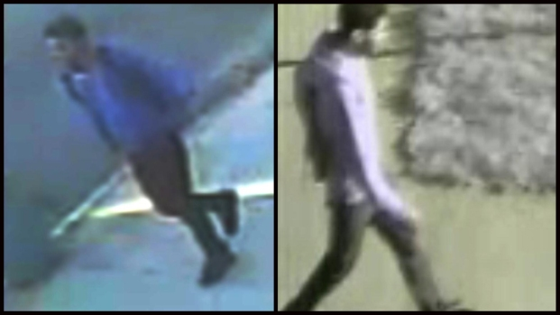 [NY] Police Search for Suspect in Child Sex Assault