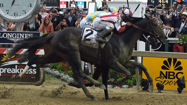 Long Shot Horse Cloud Computing Wins the Preakness Stakes