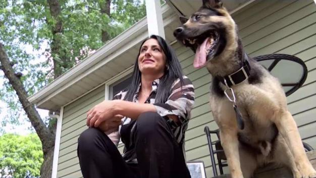 I-Team: Elite Corrections K-9 Unit in Disarray Amid Controversy