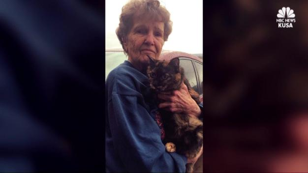 Grandma Gets Stuck in Car With Cat for 5 Days
