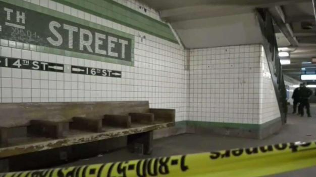 Man and Dog Stabbed in Manhattan Subway Station
