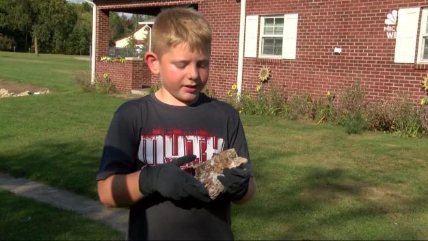 Boy Finds Huge Ancient Tooth in Backyard