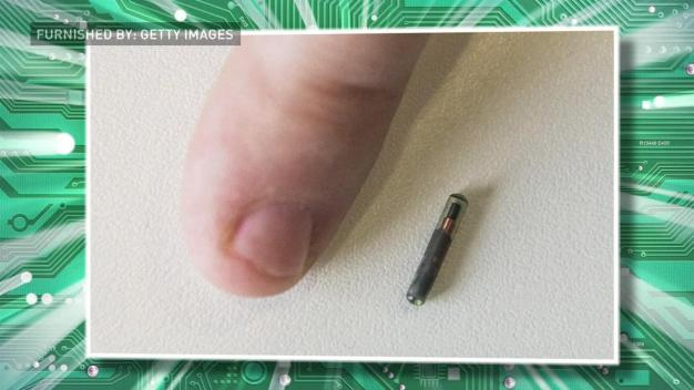 This Company Is Microchipping Its Employees