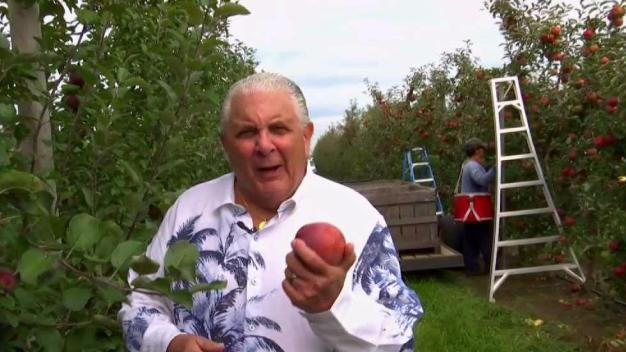 Produce Pete: Apples