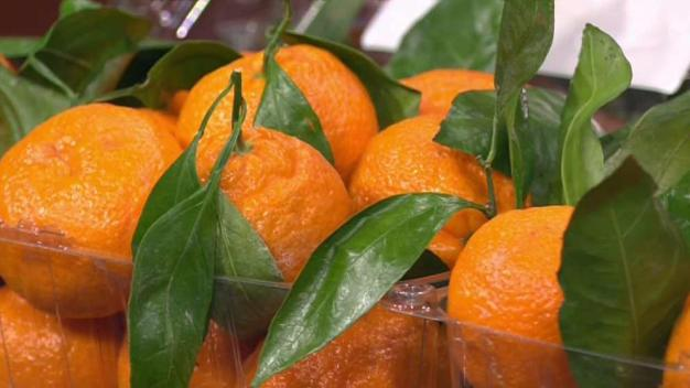 Produce Pete: Satsuma Oranges}