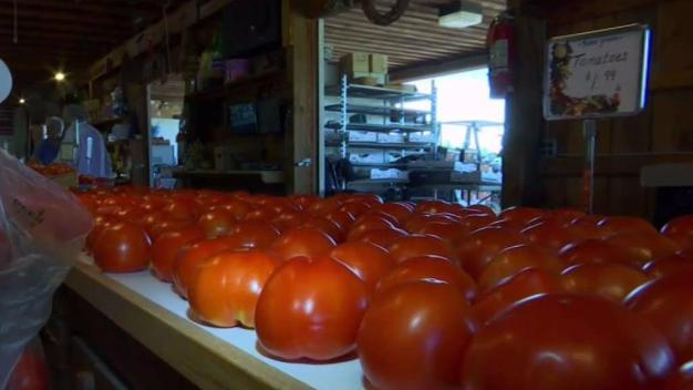 Produce Pete: Tomatoes