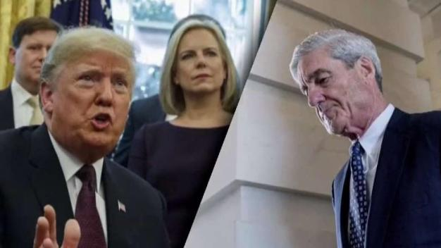 Response to Special Counsel Report
